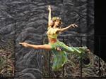 Танец, история танца, жизнь танца, пляски, хореография, народный танец, хореография, история танца, танцевальные движения, танцуй ради жизни, виды танцев, сценический танец, классическая хореографиякурсы хореографии
