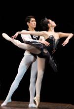 Танец, история танца,балетмейстер, жизнь танца, бытовые танцы, пляски, хореография, народный танец, хореография, история танца, танцевальные движения, танцуй ради жизни, виды танцев, сценический танец, классическая хореография, курсы хореографии, опера, танцы и опера, связь танца с оперой