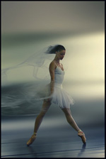 Танец, история танца, природа танца, жизнь танца